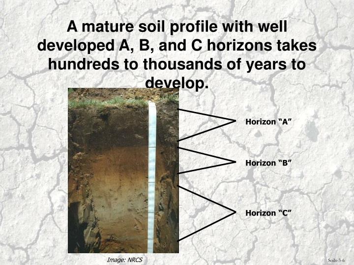 A mature soil profile with well developed A, B, and C horizons takes hundreds to thousands of years to develop.