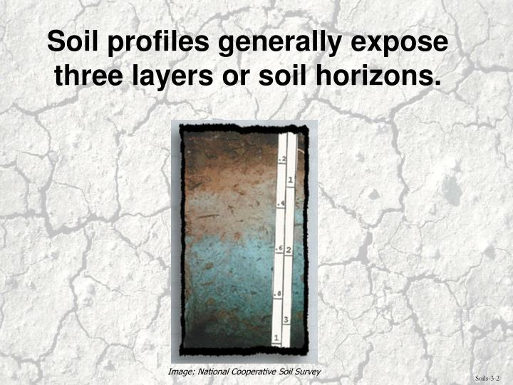 Soil profiles generally expose three layers or soil horizons.