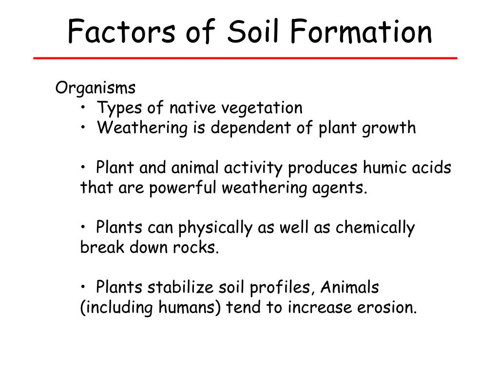 Factors of Soil Formation
