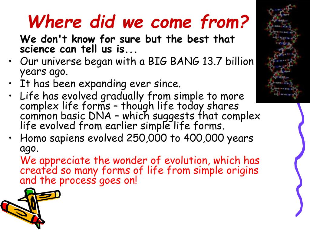 Where did we come from?