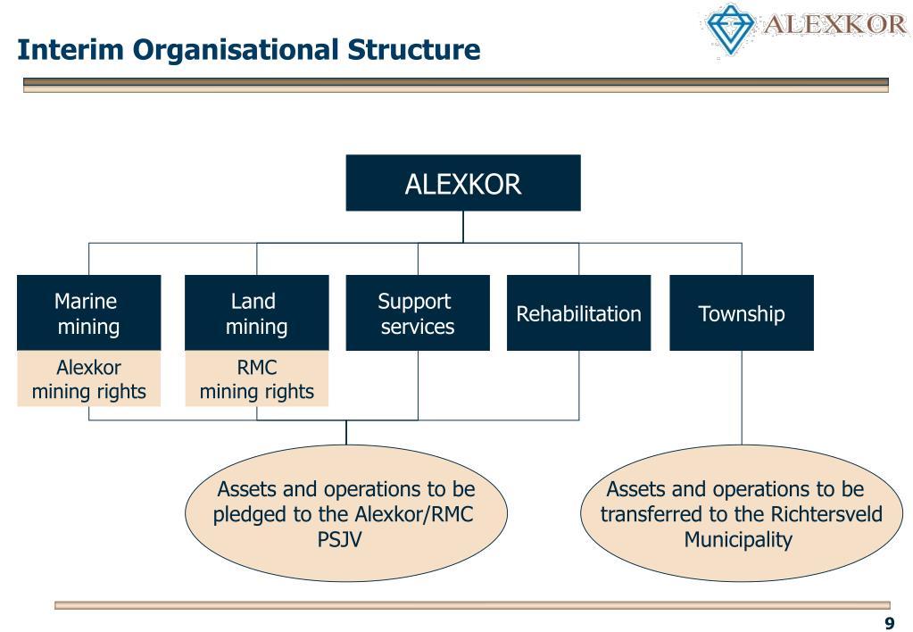 Interim Organisational Structure