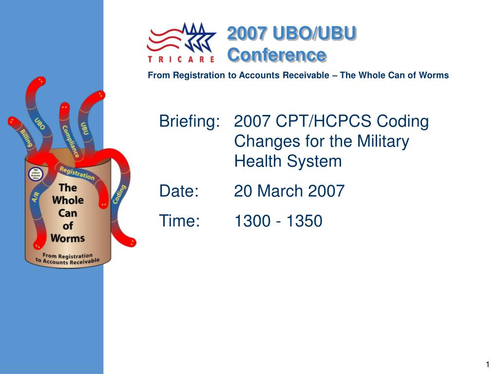 Briefing:   2007 CPT/HCPCS Coding Changes for the Military Health System