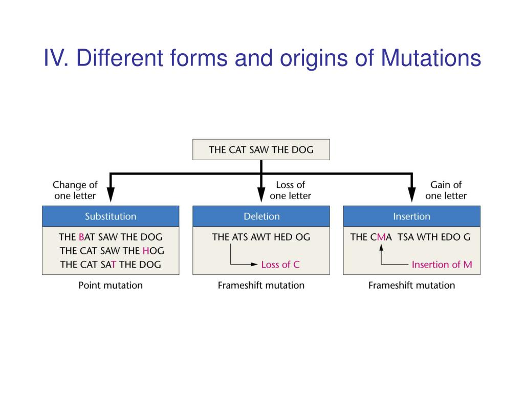 IV. Different forms and origins of Mutations