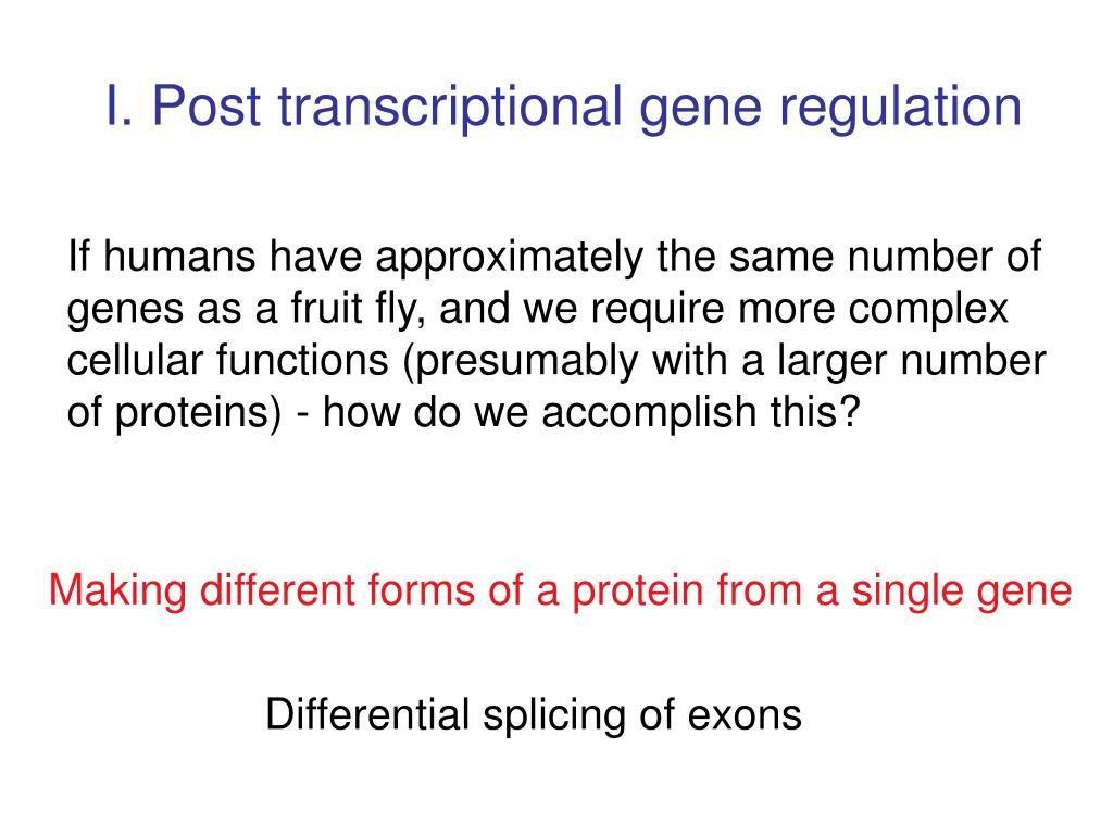I. Post transcriptional gene regulation