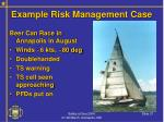 example risk management case