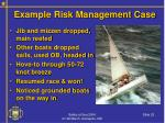 example risk management case22