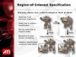 region of interest specification27