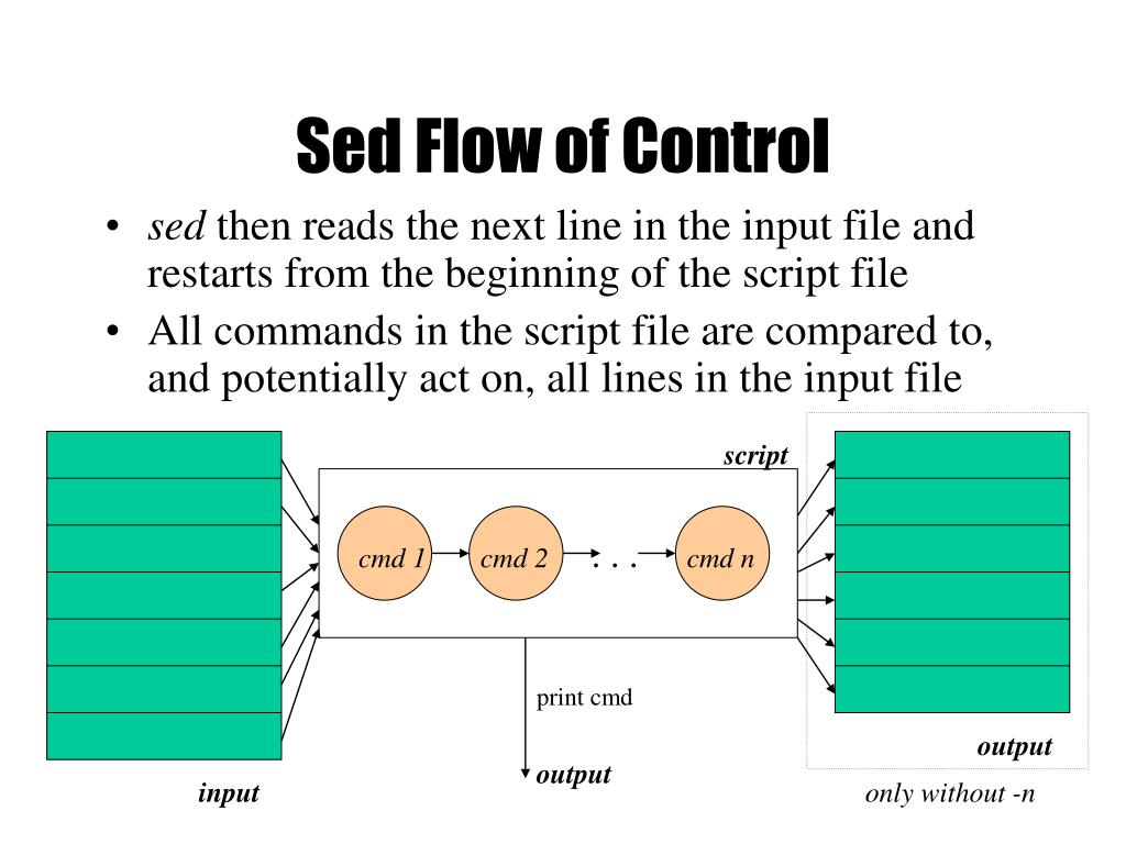 Sed Flow of Control