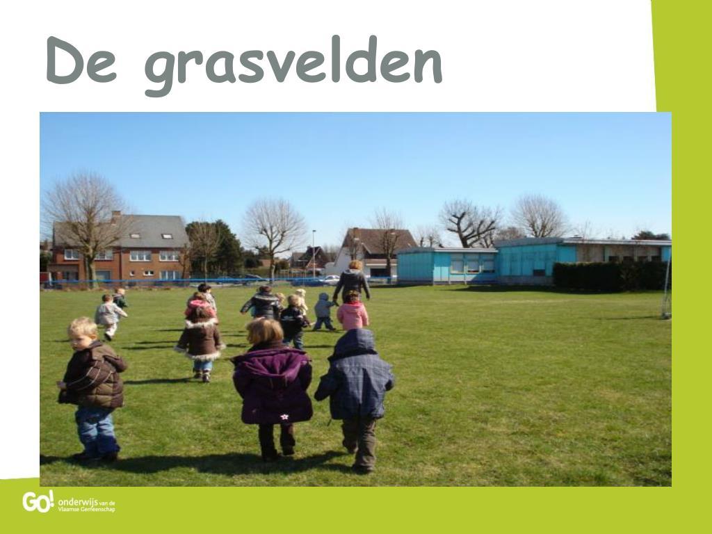 De grasvelden