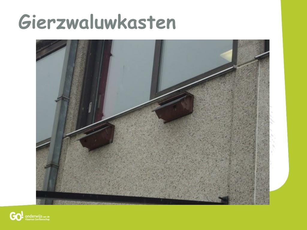 Gierzwaluwkasten