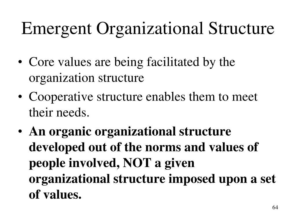 Emergent Organizational Structure