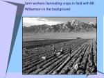 farm workers harvesting crops in field with mt williamson in the background