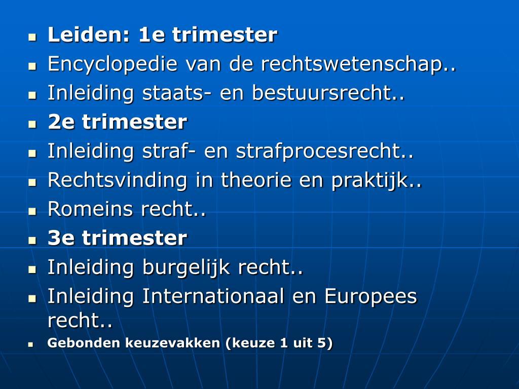 Leiden: 1e trimester