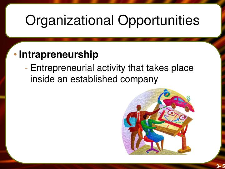 Organizational Opportunities
