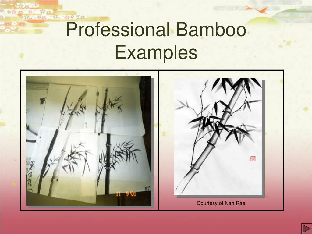 Professional Bamboo Examples