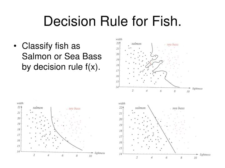 Decision rule for fish