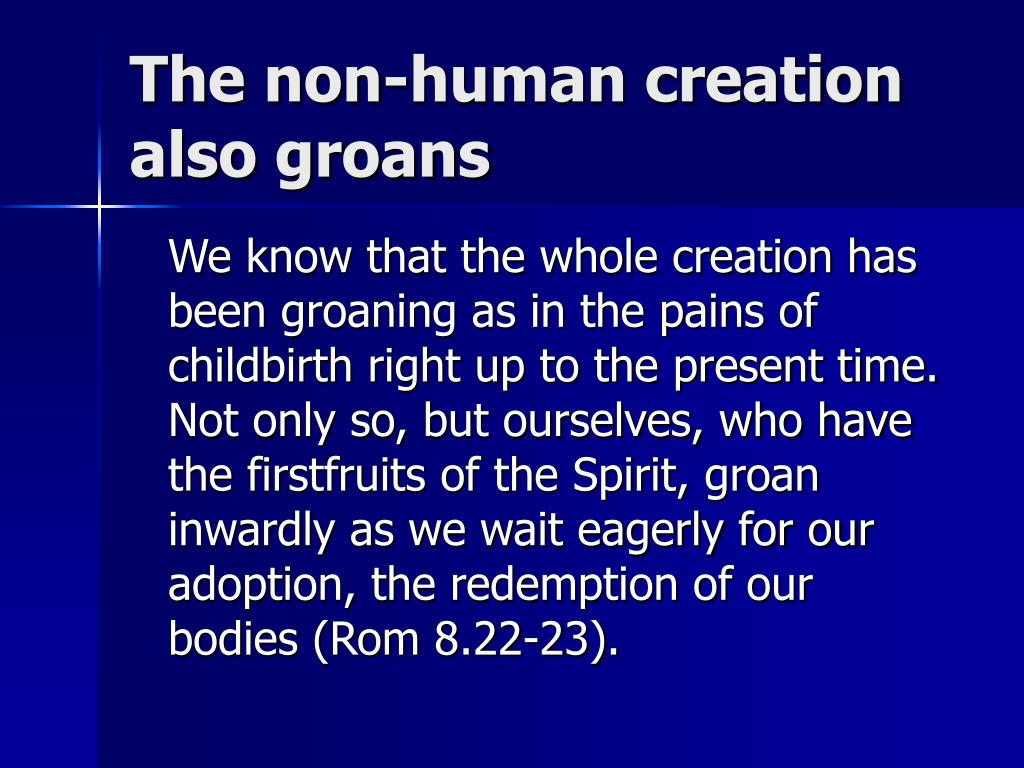 The non-human creation also groans