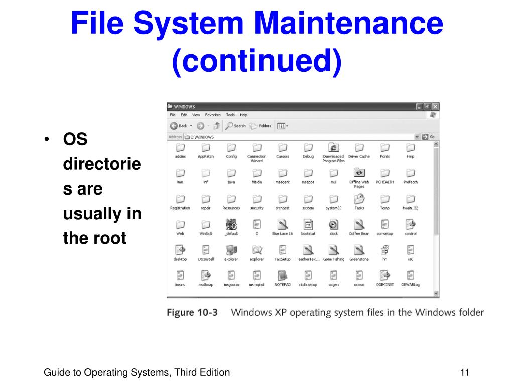 File System Maintenance (continued)