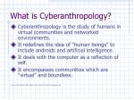 what is cyberanthropology
