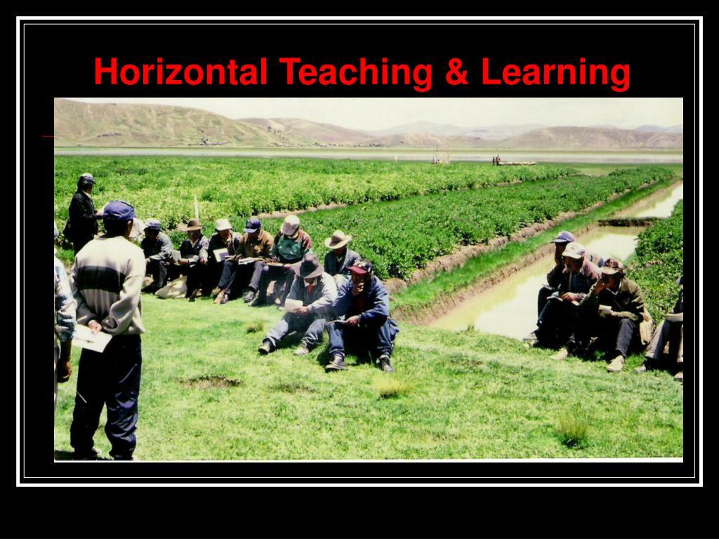 Horizontal Teaching & Learning
