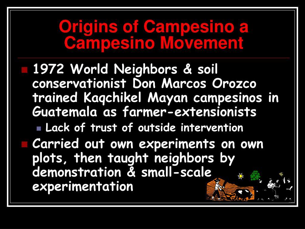 Origins of Campesino a Campesino Movement
