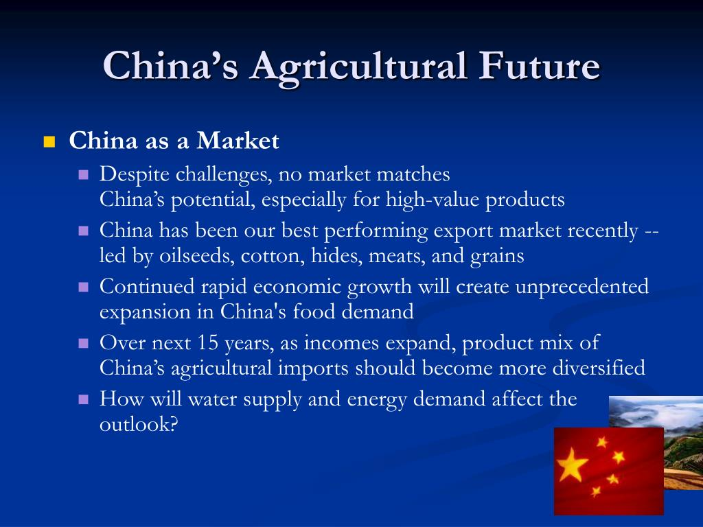 China's Agricultural Future