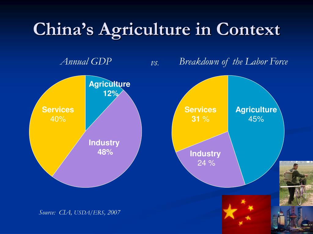 China's Agriculture in Context