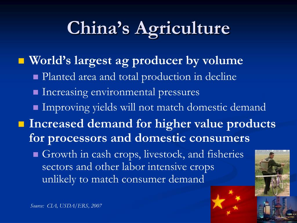 China's Agriculture