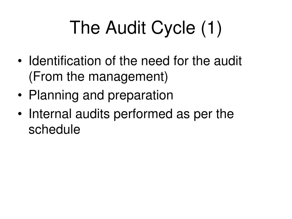 The Audit Cycle (1)
