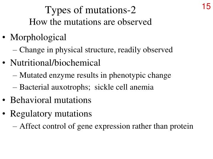 PPT Chromosomal mutations PowerPoint Presentation ID245025 – Types of Mutations Worksheet
