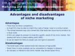 advantages and disadvantages of niche marketing