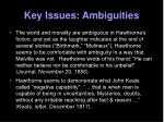 key issues ambiguities15