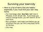 surviving your town city27