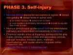 phase 3 self injury