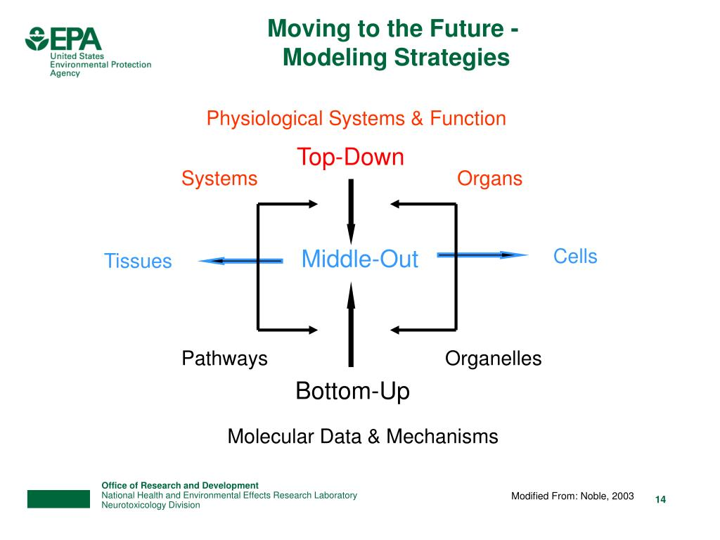 Physiological Systems & Function
