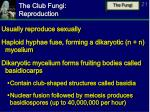the club fungi reproduction