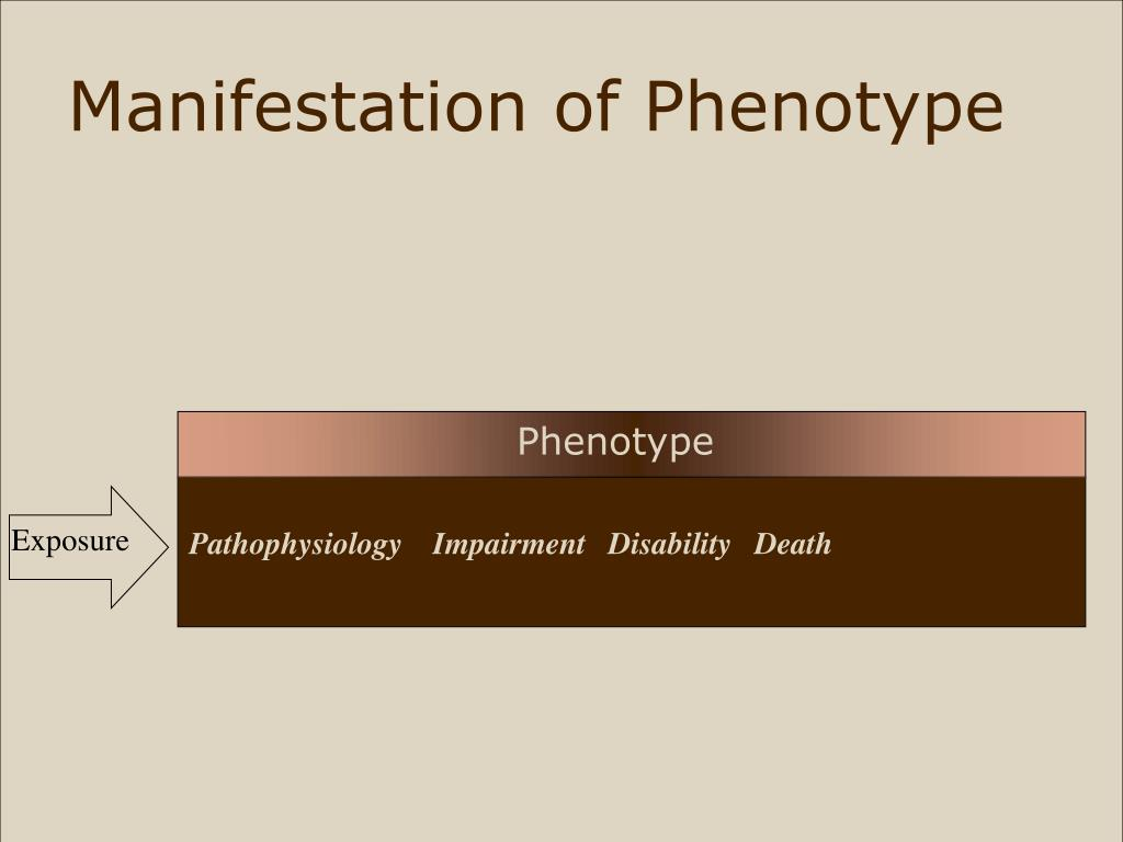 Manifestation of Phenotype