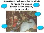 sometimes dad would let us climb to reach the apples branch after branch up to the sky
