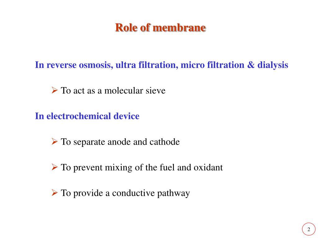Role of membrane