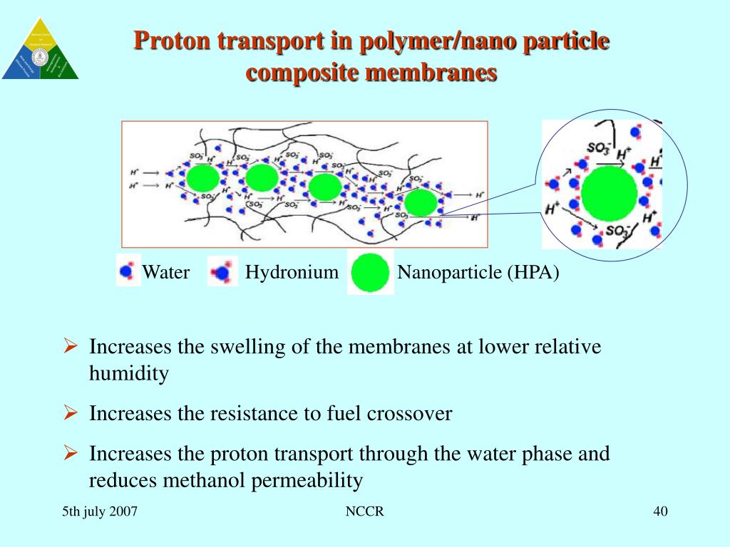 Proton transport in polymer/nano particle composite membranes