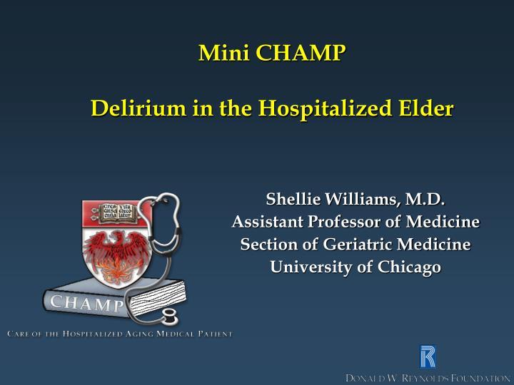 Mini champ delirium in the hospitalized elder