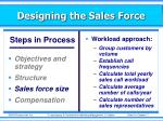 designing the sales force6