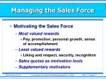 managing the sales force12