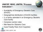 unicef who unfpa process indicators