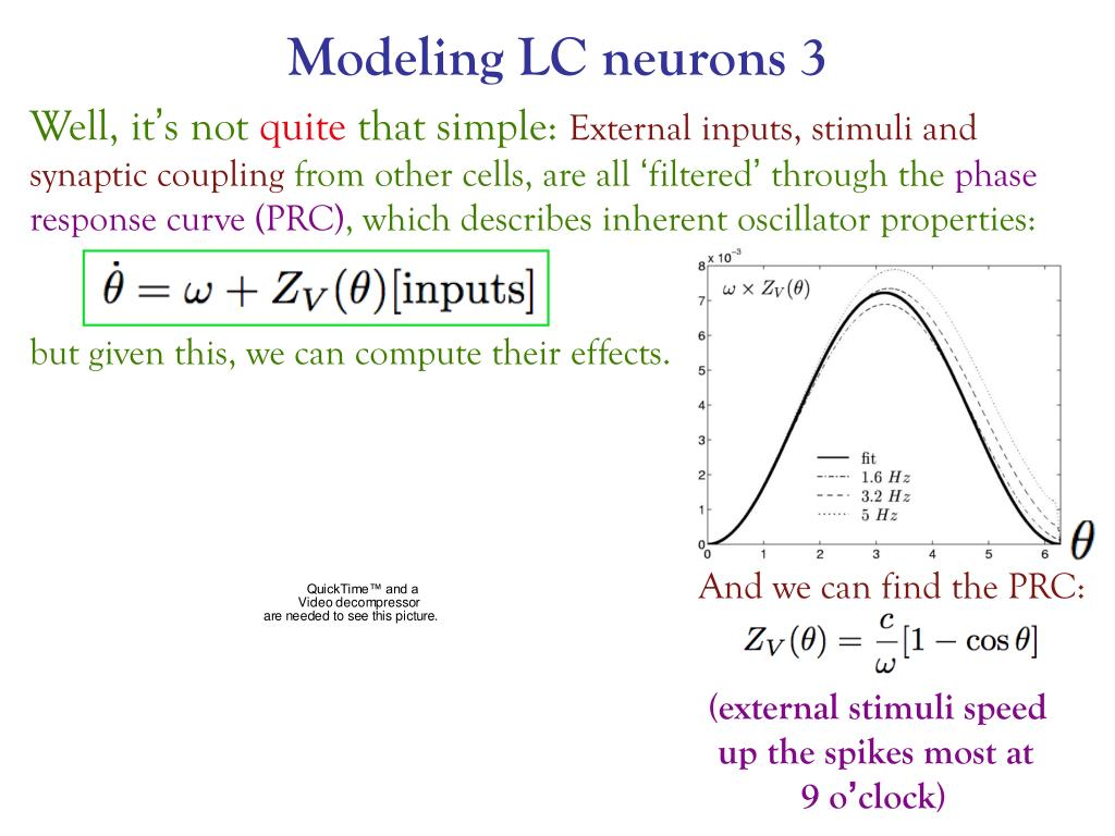 Modeling LC neurons 3