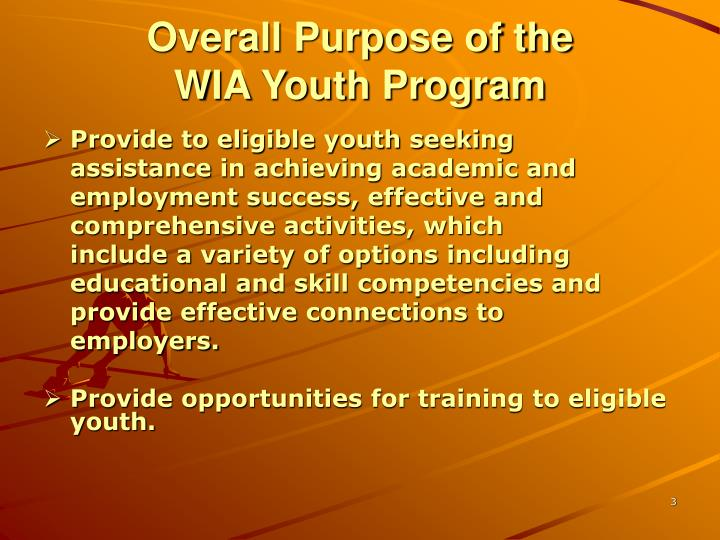 Overall purpose of the wia youth program