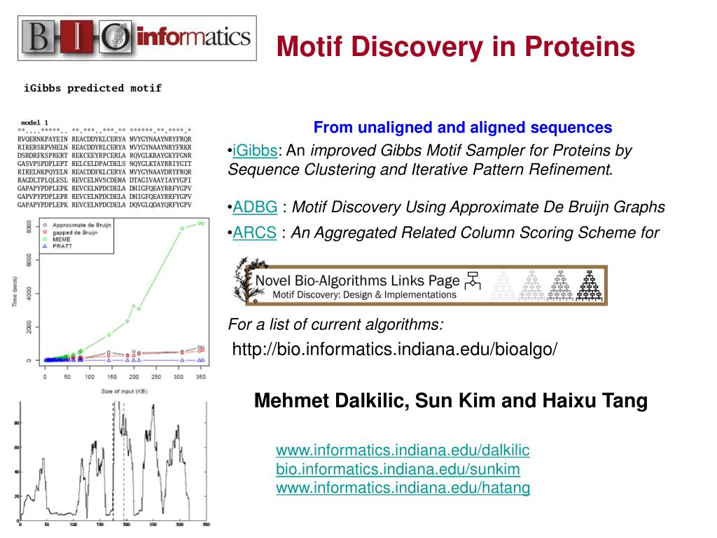 Motif Discovery in Proteins