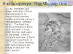 archaeopteryx the missing link