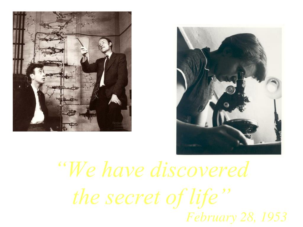 """We have discovered the secret of life"""
