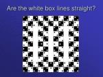 are the white box lines straight